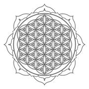 Vector mandala sacred geometry illustration. Stock Illustration