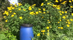 Plastic organic fertilizer canister i garden Stock Footage