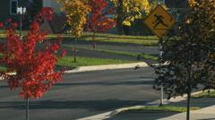 Suburban Street in Autumn. Stock Footage