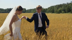 Young beautiful wedding couple in a field Stock Footage