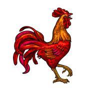 Red fiery rooster. Vintage black vector engraving illustration Stock Illustration