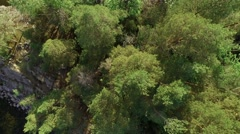 Small island with green trees and stones, rising shot revealing the surrounding Stock Footage