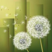 Abstract background with two flowers dandelions Stock Illustration