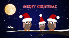 Footage Merry Christmas Birds and caps Stock Footage