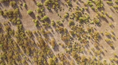 Abstract view of rock rose from the air, rotating camera Stock Footage