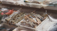 Fresh fish and seafood on the market Stock Footage