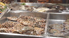 Fresh Fish in Ice on the Counter Market Stock Footage