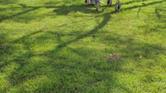 Asian nurse helping elder man and woman with disabilities walking on the garden. Stock Footage
