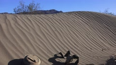 Life and death in Death Valley Stock Footage