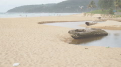 Plastic trash and other marine garbage on tropical sandy beach Stock Footage