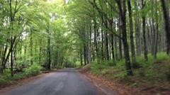 Driving through Bükk National Park Stock Footage