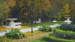 Gardener cleans leaves in Neskuchnii garden  Stock Footage