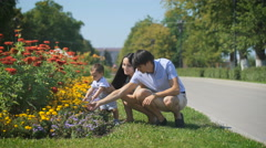 Parents show a bed of flowers to his son Stock Footage