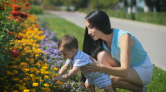 Mom holding the baby while he is touching the flowers Stock Footage