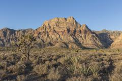 Red Rock Canyon National Conservation Area in Nevada Stock Photos