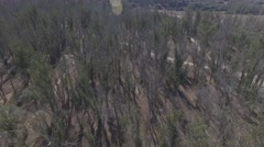 Overhead Shot of a Forested Area with Hiking Trails Stock Footage