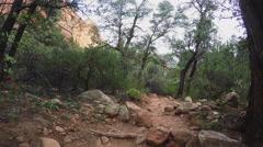 POV Hiking Rocky Trail- Low View- Sedona Arizona Stock Footage