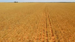 Farm Crops Left Hand Track Stock Footage