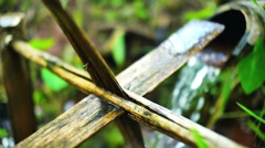 Bamboo Water Feature Stock Footage