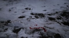 Blood Dripping on Snow Stock Footage