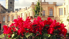 Red Flowers in Flower Bed with Facade of a Palace on Background Stock Footage