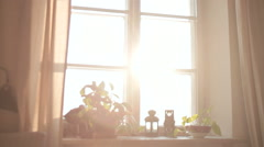 BOY IN FRONT OF THE WINDOW Stock Footage