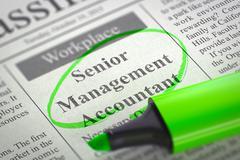 Senior Management Accountant Wanted. 3D Stock Illustration