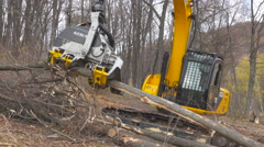 RUSSIA SAMARA - DEFORESTATION SITE - A Feller Buncher in a forest of the Arau Stock Footage