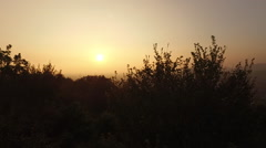 Image of the sunset through the trees Stock Footage
