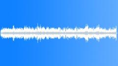 Scott Joplin: The Chrysanthemum Stock Music