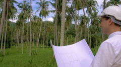 Architector inspect land for construction site in coconut palm tree grove Stock Footage