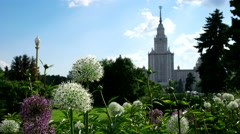 Spire of Moscow University, Moscow state University, the bee on the flowers Stock Footage