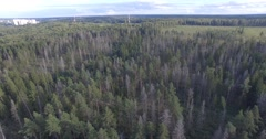 Aerial summer autumn pond river park forest nature reserve lake leaf by drone Stock Footage
