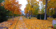 Peaceful cementary during a colorful autumn Stock Footage