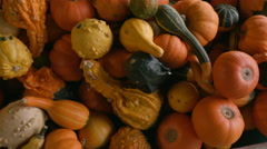 Various Gourds from Above in a Crate Stock Footage
