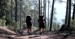 Two Young Tourist Hikes Away, Through Thick Forest Stock Footage