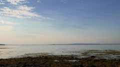 Video of the coastline at low tide in Searsport, Maine Stock Footage