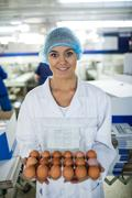 Female staff holding a carton of eggs Stock Photos
