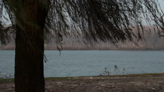 "The river ""Po"" (italy) seen through a tree Stock Footage"