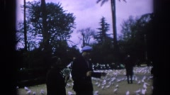 1966: people taking pictures of the multitudes of white doves. SPAIN Stock Footage
