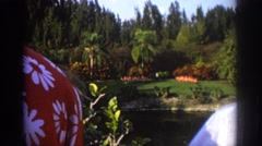 1971: watching nature at it's finest. MIAMI FLORIDA Arkistovideo
