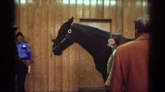 1976: horse buyers talking about pony in barn WATKINS GLEN NEW YORK Stock Footage