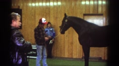 1976: a farmer with his horse inside a building while others look on WATKINS Stock Footage