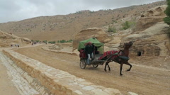 Bedouin carriage in Siq passage to Petra city Stock Footage