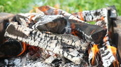 Closeup of hot burning firewood in campfire Stock Footage