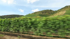 Green vineyards at hills of Moselle river in Rhineland-Palatinate Stock Footage