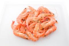 Cuisine and Food, Cooked Prawns or Tiger Shrimps in White Tray. Kuvituskuvat