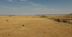 Flying towards safari car Masai Mara Stock Footage