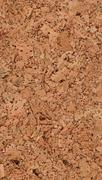 Texture of natural corkwood with large parts Stock Photos