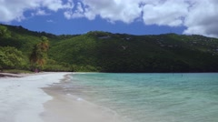 Video of the beach at Magens Bay, with Pelican diving Stock Footage